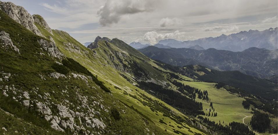 ZF75d1lhQ0SyLWYEGOqO_21_forest_mountains